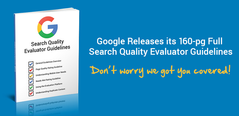 Google Evaluator Report